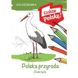 Kolorowanka Polska przyroda zwierzęta
