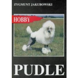 Pudle
