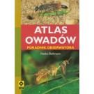 Atlas owadów (dodruk 2017)