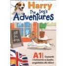 Harry the Dog's Adventures. Czytanki i ćwiczenia w języku angielskim dla dzieci.