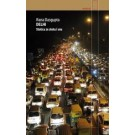Delhi. Stolica ze złota i snu (wyd. 2018)