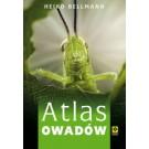 Atlas owadów (wyd. 2018)