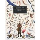 Audubon. Na skrzydłach ptaków