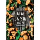 Atlas grzybów (przecena)