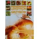 Expert. Ilustrowany leksykon grzybów w Polsce