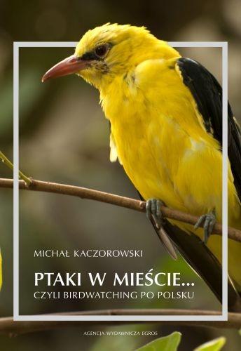 Ptaki w mieście... czyli birdwatching po polsku